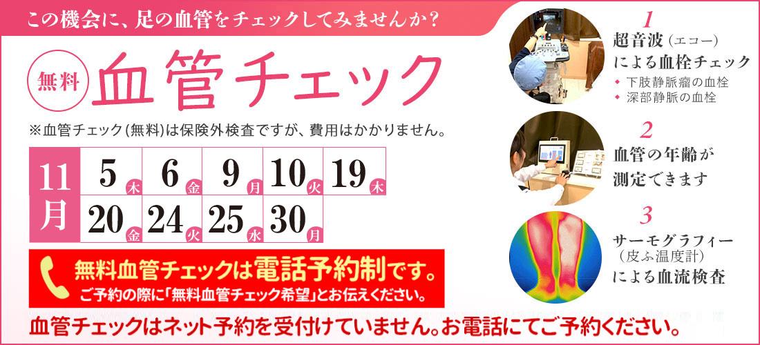 shizuoka_bnr11a